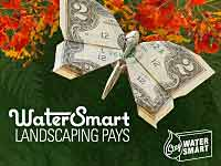 Water Smart Landscaping Pays